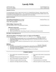 Resume Nursing Assistant Nursing Assistant Resume Objective Resume