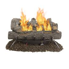pleasant hearth 24 in 30000 btu dual burner vent free gas fireplace