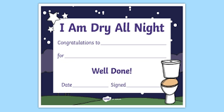 I Am Dry All Night Potty And Toilet Training Certificate