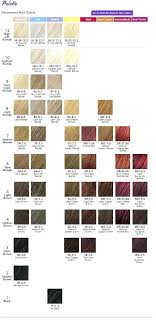 Rusk Swatch Book Rusk Deepshine Color Chart Book With Chi