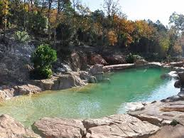 Natural Swimming Pools Amazing Swimming Pool