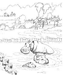 Kleurplaten En Zo Kleurplaat Van Nijlpaarden In De Dierentuin