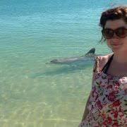 Rachael Rowell (rachcoon1) – Profile   Pinterest
