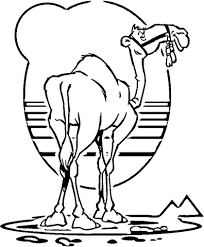 Small Picture Camel coloring page Free Printable Coloring Pages