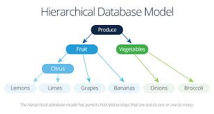 Relational Data Modelling All About Relational Database Models Smartsheet