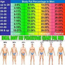 Body Fat Percentage Chart 17 Year Old Bodybuilder Chart