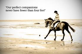 Horseback Riding Quotes