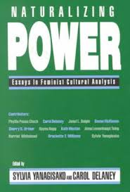 naturalizing power essays in feminist cultural analysis  naturalizing power essays in feminist cultural analysis