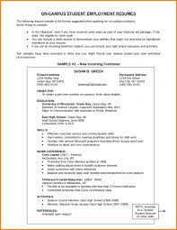 Resume Objective Section 6 Affidavit What To Write In Objectives