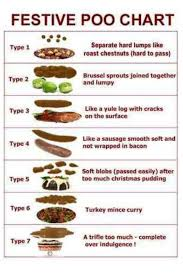 Bristol Stool Chart For Kids Christmas Bristol Stool Chart Nursey Humour Poo Chart