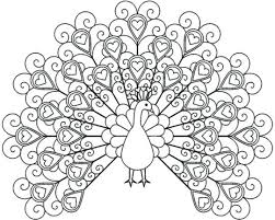Peacock Coloring Sheet Peacock Coloring Pages For Kids Printable Of
