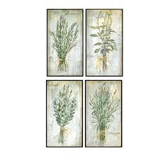 herb sage framed art