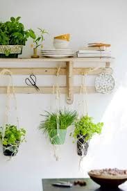 Indoor Kitchen Gardens Verse Kruiden In De Keuken Gardens Planters And Hanging Herbs