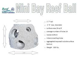 average balls size reef ball foundation getting grants for your project