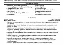 Non Profit Ceo Resume Examples Socalbrowncoats