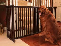 pet gates extra wide