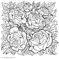 Flower coloring pages for kids and adults: Rose Flower Coloring Pages For Grown Up Coloring Pages Printable Com