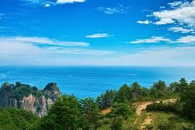山の上から望む夏の海の写真素材を無料ダウンロード Beiz Images