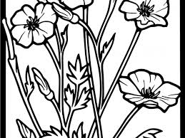 Best Of Poppy Super Coloring Kleurplaten Pinterest Free Coloring Book