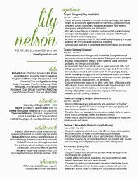 Create Infographic Resume Online Beautiful Indesign Resume Samples