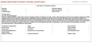 Sample real estate agent compensation plan template. Real Estate Agent Employment Contract