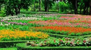 garden shows. January Through March Are Popular Months For Home And Garden Shows In The Baltimore Washington D.C. Areas. These Great Opportunities To See I