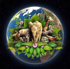 short essay on earth words earth