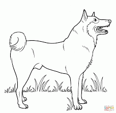 Small Picture Coloring Pages Dog Christmas Free Printable Online Chihuahua Pdf