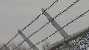 Barbed Wire Fence PS I Love You