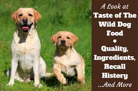 taste of the wild dog food reviews ings recall history and our rating