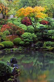 9 PLANTS THAT GARDENERS HATE. Japanese LandscapeJapanese GardensJapanese ...