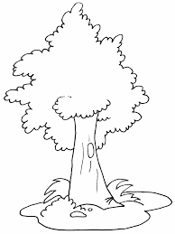 Coloring Book Trees Tree4 Pages Best Free Coloring Pages Site