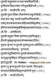 essay on tulsi plant in marathi language   homework for you essay on tulsi plant in marathi language   image