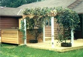 backyard grape arbor designs grape arbor design grape arbor design grape  arbor designs metal grape arbor .