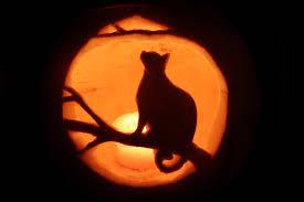 Cat Jack O Lantern Pattern Best Design