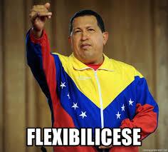 FLEXIBILICESE - Hugo Chavez Expropiese ...