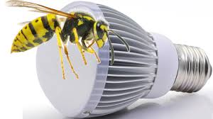 Do Led Lights Attract Less Bugs Are Bugs Insects Attracted To Led Lights