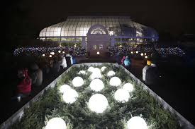 Toledo Lights Before Christmas Coupons Lights Before Christmas At The Conservatory Lights Before