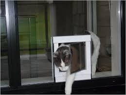awe inspiring glass door dog door insert sliding glass dog slider dog door insert 1 door