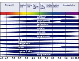 The Effect Of Soil Ph On Nutrient Availability Download