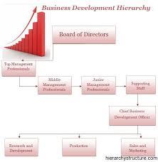 Business Development Manager Organizational Chart Business Development Hierarchy Business Management Marketing