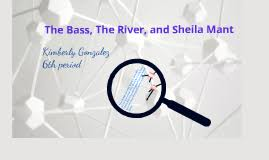 example about the bass the river and sheila mant essay plot elements in the bass the river and sheila mant