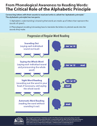 How To Make An Infographic In Word The Alphabetic Principle From Phonological Awareness To Reading