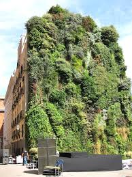 how to make a vertical garden decorations 19 ideas to decorate interior with indoor vertical