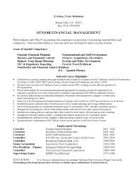 senior financial manager and accounting finance audit consultant it