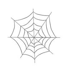 web drawing spiders a sketch by hand pencil drawing royalty free vector