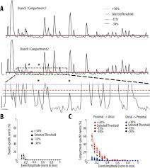 High Somato Dendritic Coupling Of V1 Layer 5 Neurons