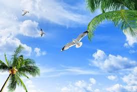 Resultado de imagem para céu azul com sol