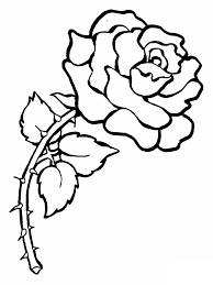 coloring pages draw a rose coloring pages for kids