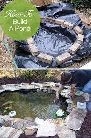 ponds backyard diy pond